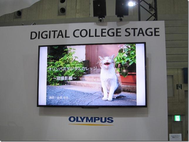 オリンパスの猫写真の撮り方講座の画像
